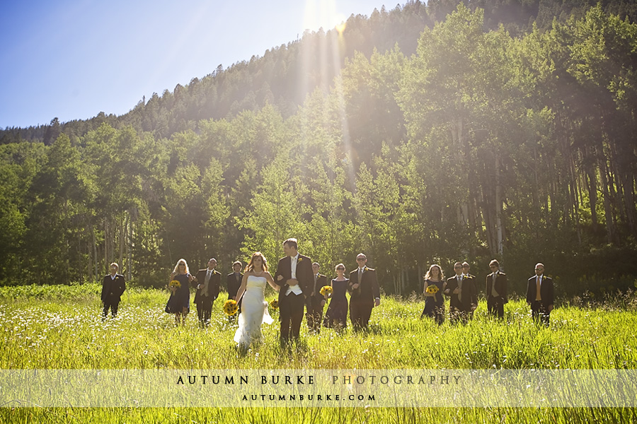 colorado mountain wedding bridal party
