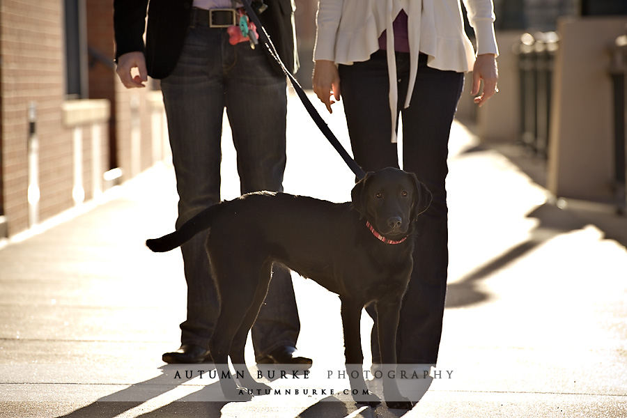 denver colorado engagement portrait session with dog