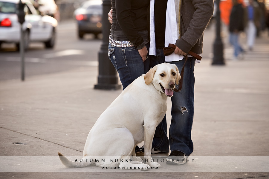denver colorado wedding engagement session dog