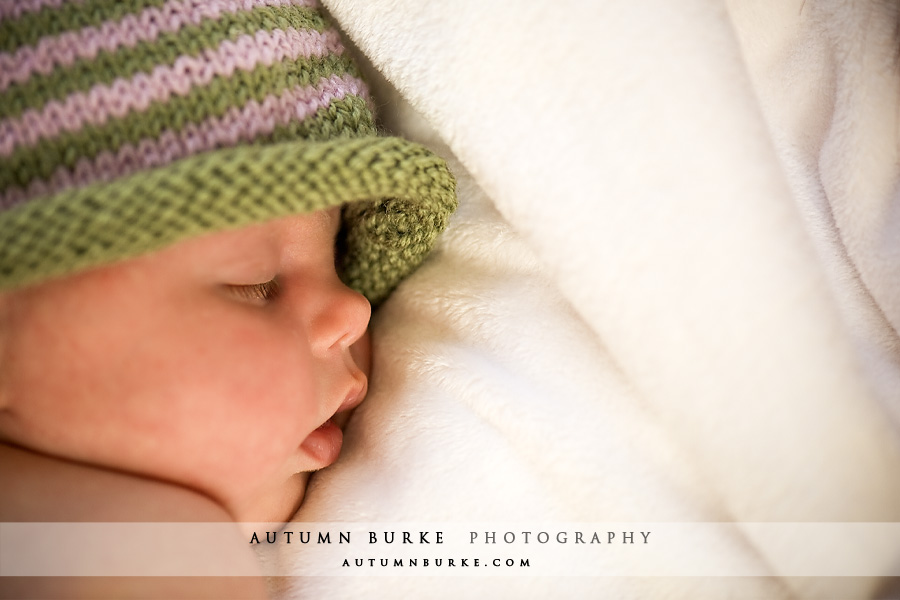 denver colorado newborn baby family portrait photographer