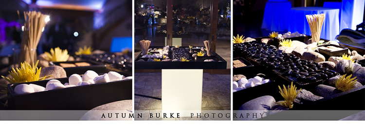 catering by design smores station colorado wedding cielo
