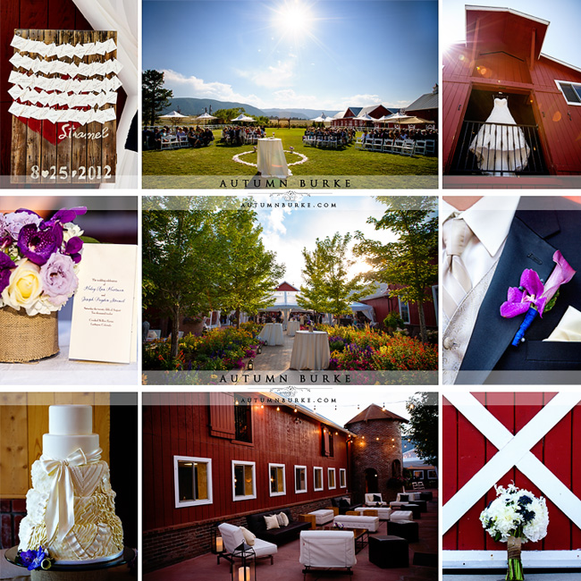 crooked willow farms larkspur colorado wedding details dress perfect petal intricate icings lounge courtyard ceremony