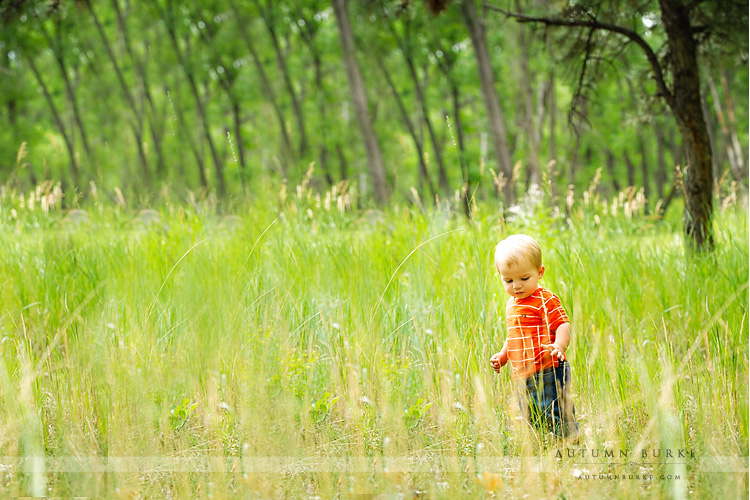 denver colorado baby in the field outdoor portrait photographer