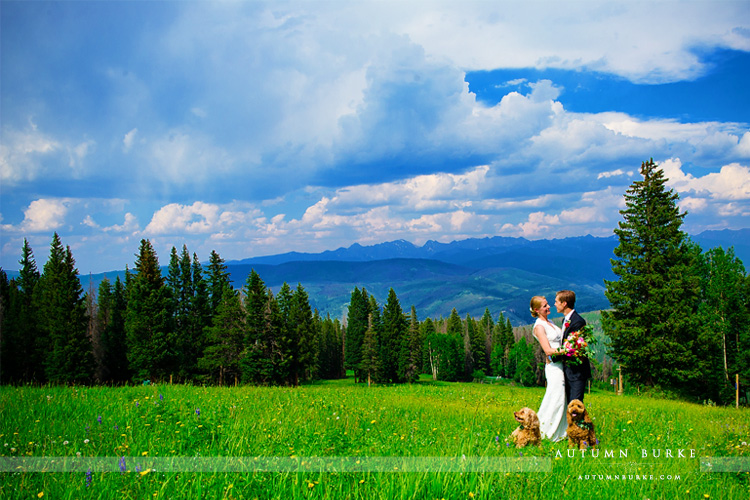 beaver creek mountain wedding colorado wedding deck bride and groom with dogs