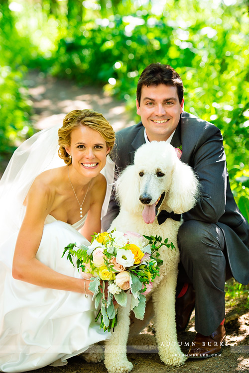 bride and groom and dog portrait beaver creek colorado wedding saddle ridge chapel