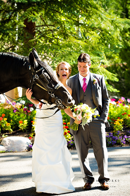 bride and groom and horse eating bouquet beaver creek colorado wedding mountain photographer