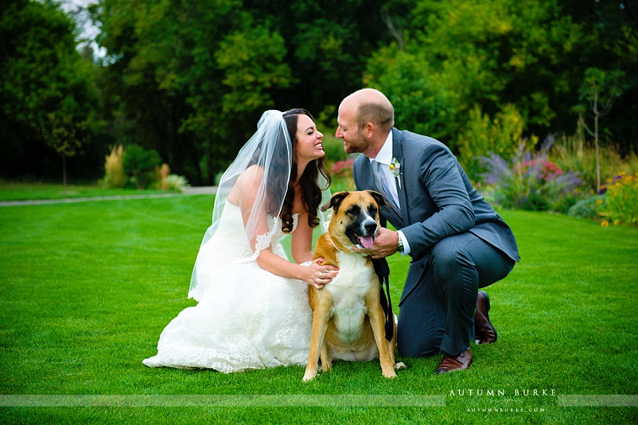 bride and groom portrait with dog denver botanic gardens at chatfield wedding