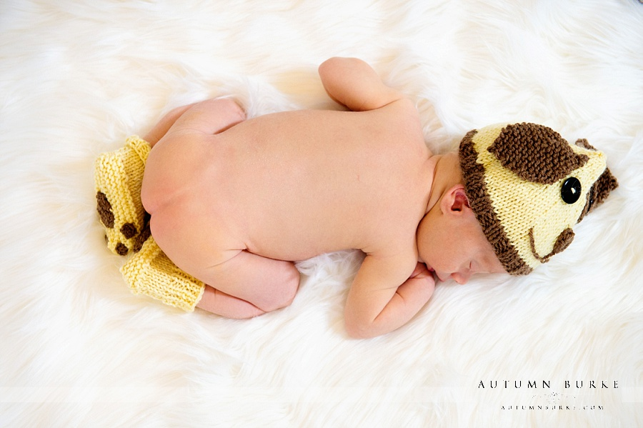 denver portrait newborn baby puppy hat and booties colorado family